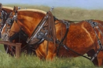 Judie Popplewell - Conversation-at-the-hitching-post
