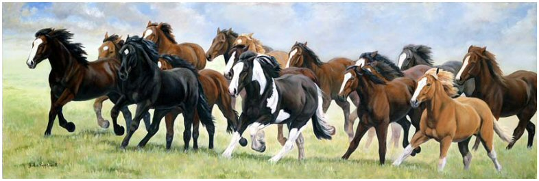 All the Pretty Horses