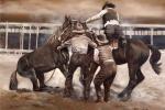 Horse Wranglers